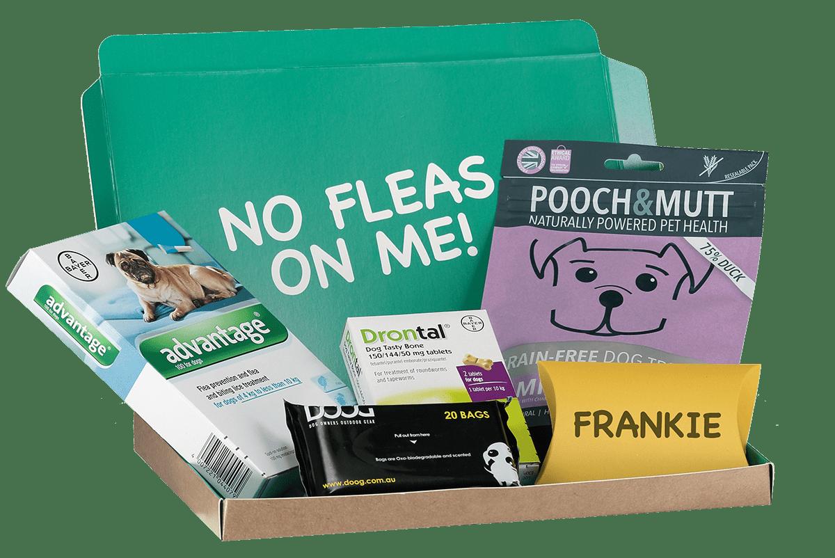 treat-box-frankie