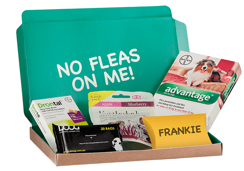 box-frankie-spx