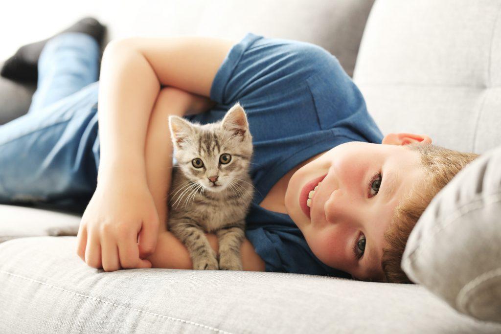 Child with kitten flea free