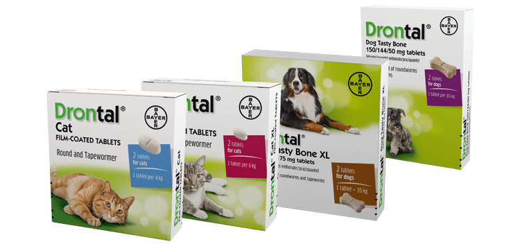 Drontal Worm Treatment