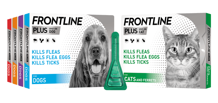 Frontline Plus Flea Treatment